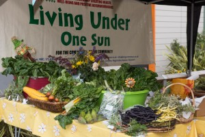 Living Under One Sun at Hale Village Festival
