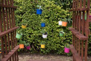 Barnsbury Community Garden Opening